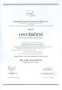 cmisk_supervizor_vichova_skolstvi-001