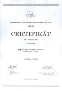 cmisk_supervizor_vichova-001